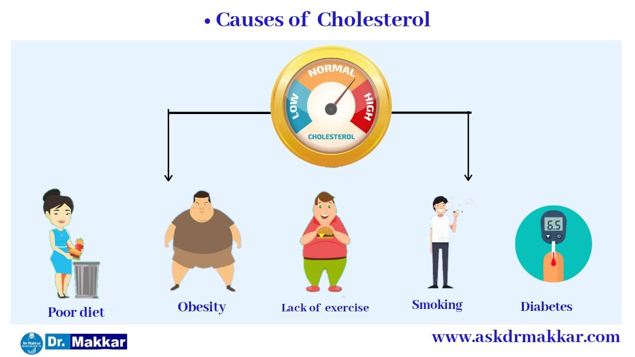 Causes of cholestrol hyperlipidaemia   कोलेस्ट्रोल हाइपरलिपीडिमिया के कारण
