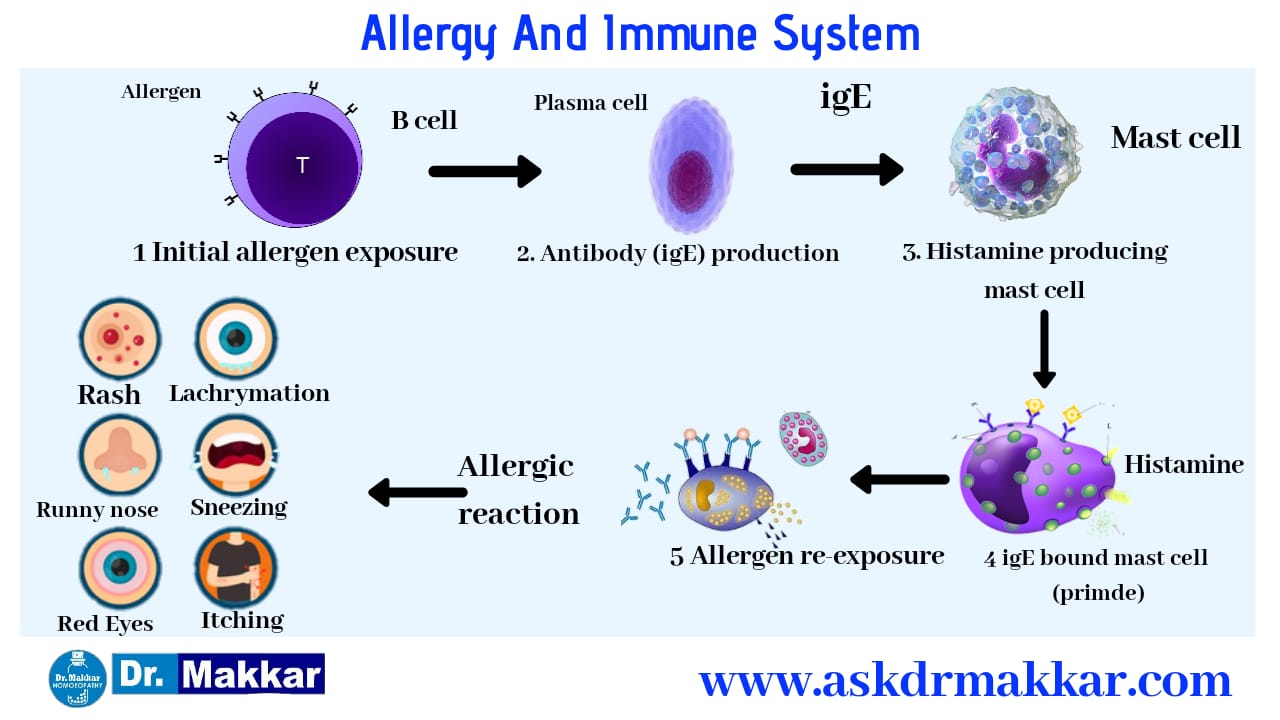 Pathophysiology of Allergy