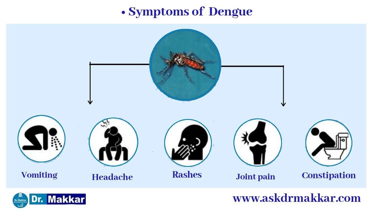 Symptoms of Dengue fever || डेंगू बुखार के लक्षण