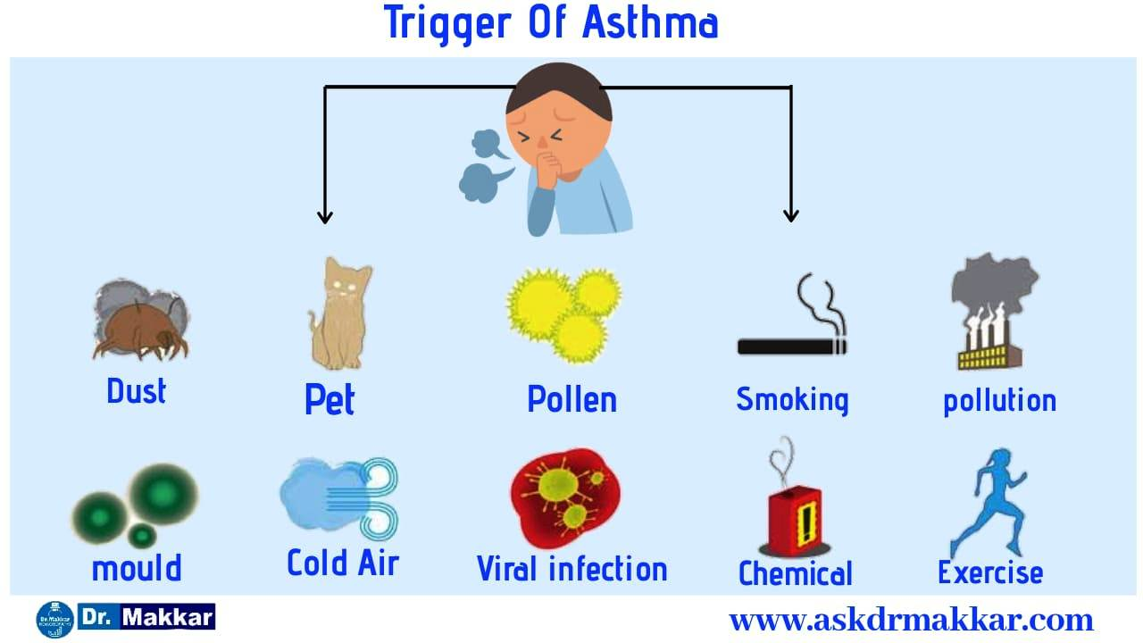 Trigger of Asthma