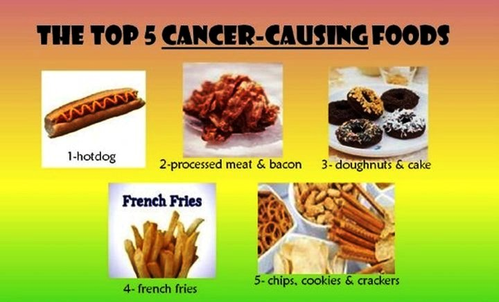 Natural Cures For Canine Cancer