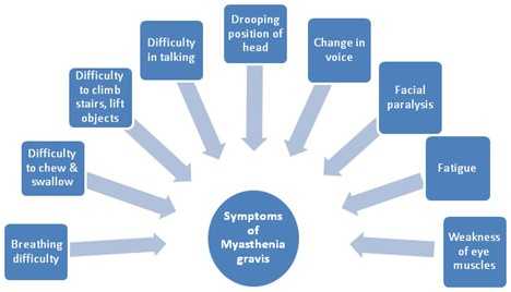 Symptoms of Myasthenia